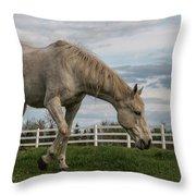 Horses #1 Throw Pillow