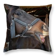 Horse Snack  Throw Pillow