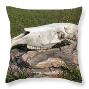Horse Spirit 1 Throw Pillow