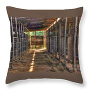 Horse Steabels  Throw Pillow
