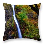 Horse Tail Falls - Autumn  Throw Pillow