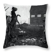 Horse Trainers Throw Pillow