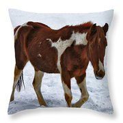 Horse With No Name Throw Pillow