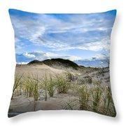 Horseneck Beach Ma. 3 Throw Pillow