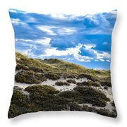 Horseneck Beach Ma.1 Throw Pillow