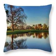 Horsepen Creek #8 Throw Pillow