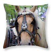 Horses 2 Throw Pillow