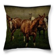 Horses 31 Throw Pillow