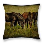 Horses 37 Throw Pillow