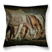 Horses 39 Throw Pillow