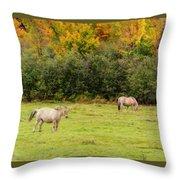 Horses Enjoying A Beautiful Autumn Day Throw Pillow