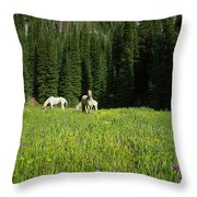 Horses Getting A Break Throw Pillow