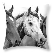 Horses - Id 16217-202749-4749 Throw Pillow
