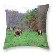 Horses In Autumn Amish Country Throw Pillow