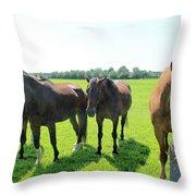 Horses In Bridgehampton Throw Pillow