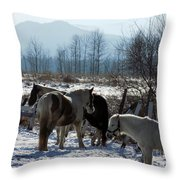Horses In Front Of Quaggy Jo Throw Pillow