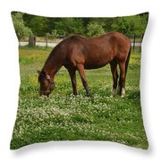 Horses In The Meadow 2 Throw Pillow