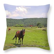 Horses In The Pasture Throw Pillow