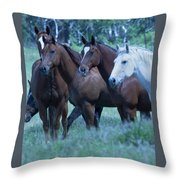 Horses Looking Throw Pillow