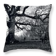 Horses On A Foggy Morning In Black And White Throw Pillow