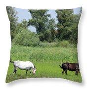 Horses On Pasture Nature Farm Scene Throw Pillow