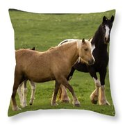 Horses Photography Throw Pillow