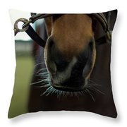 Horse Whiskers Throw Pillow