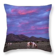 Horses With New Mexico Sunset Throw Pillow