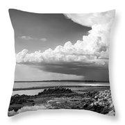 Horseshoe Beach Throw Pillow