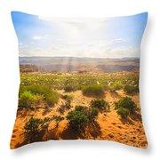 Horseshoe Bend Desert Throw Pillow