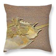 Horseshoe Crab Throw Pillow