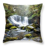 Horseshoe Falls Throw Pillow