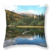 Horseshoe Lake Throw Pillow
