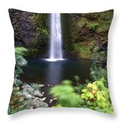 Horsetail Falls Basin Throw Pillow