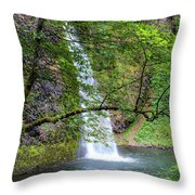 Horsetail Falls, Oregon Throw Pillow