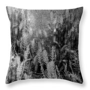 Horsetail Plant Panorama Two  Throw Pillow