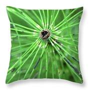 Horsetail Reed 1 Throw Pillow