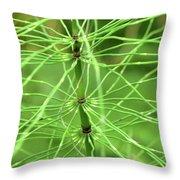 Horsetail Reed 2 Throw Pillow