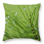 Horsetail With Dew Throw Pillow
