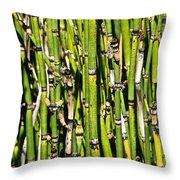 Horsetails #2 Throw Pillow