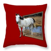 Horsing Around Throw Pillow by Shane Bechler