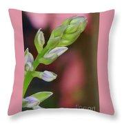 Hosta Blooming Throw Pillow