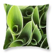 Hostas 5 Throw Pillow by Anna Villarreal Garbis