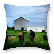 Hot Eve Night On The Farm Throw Pillow