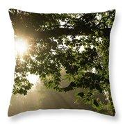 Hot Golden Mists Of Summer Throw Pillow
