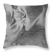 Hot Love Cold War Throw Pillow