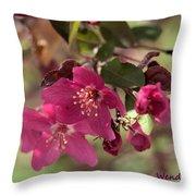 Hot Pink Blossoms Throw Pillow