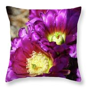 Hot Pink Hedgehog Throw Pillow