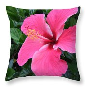 Hot Pink Hibiscus 1 Throw Pillow
