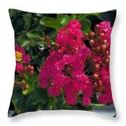 Hot Pink Jacaranda Throw Pillow